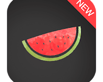 Melon VPN APK