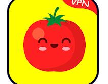 Tomato VPN APK
