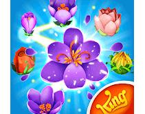Blossom Blast Saga APK Download